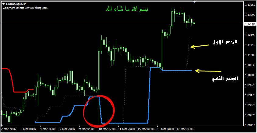 SSG Bline Indicator